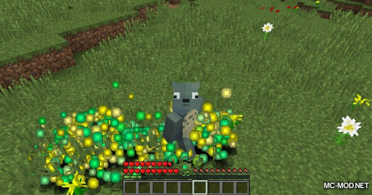 XP Matters mod for Minecraft (6)