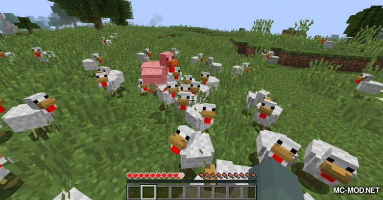 Aggressive Chickens mod for Minecraft (8)