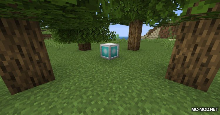 Chunkt mod for Minecraft (9)