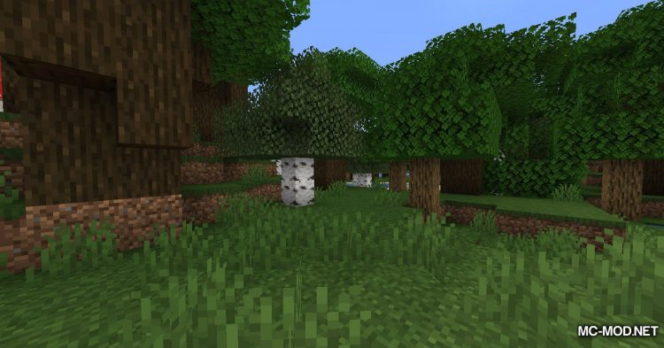 Extra Tags Fabric mod for Minecraft (3)
