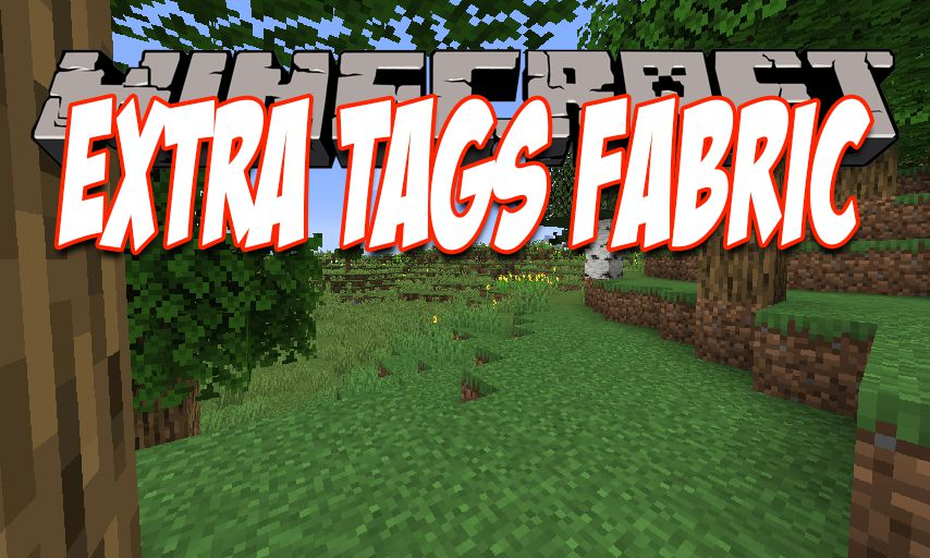 Extra Tags Fabric mod for Minecraft logo