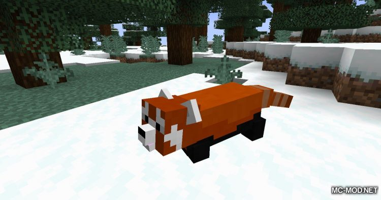Red Pandas mod for Minecraft (10)