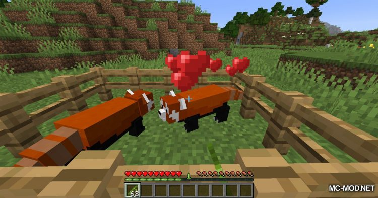 Red Pandas mod for Minecraft (8)