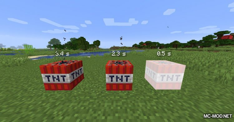 Time To Live mod for Minecraft (11)