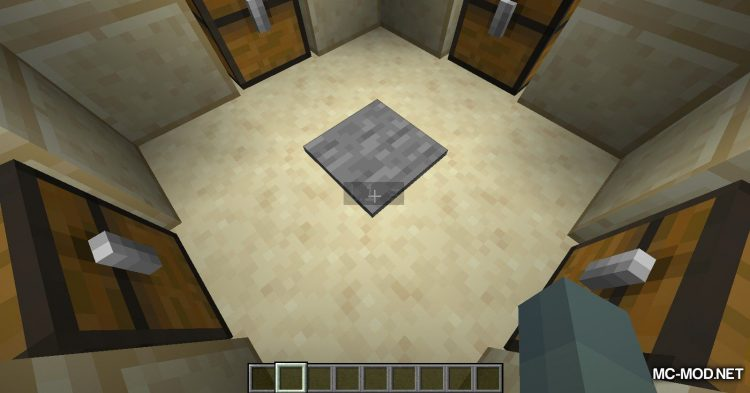Time To Live mod for Minecraft (5)