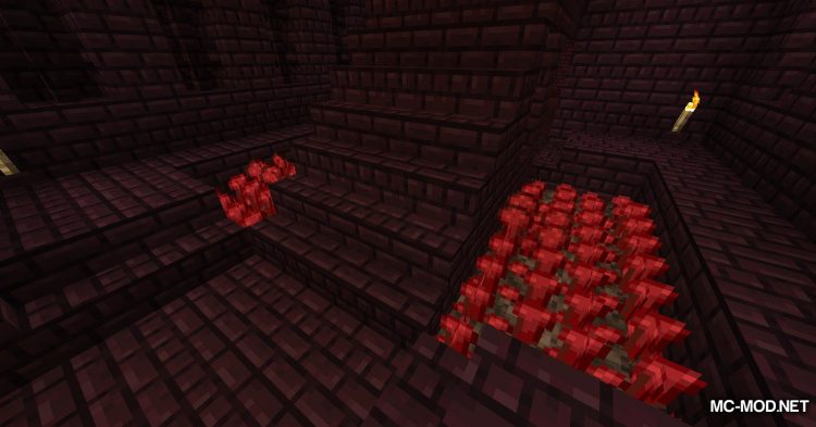 Edible Nether Wart mod for Minecraft (2)