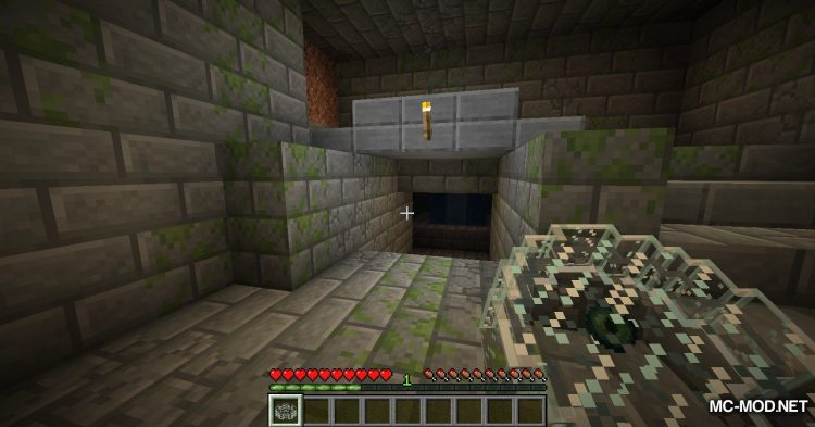Ender Compass mod for Minecraft (11)