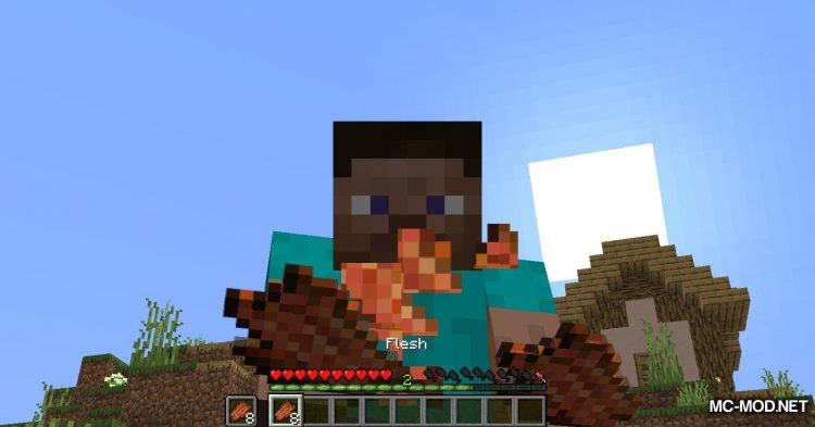 Rotten Flesh To Food mod for Minecraft (11)