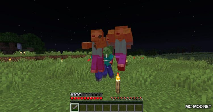 Rotten Flesh To Food mod for Minecraft (4)