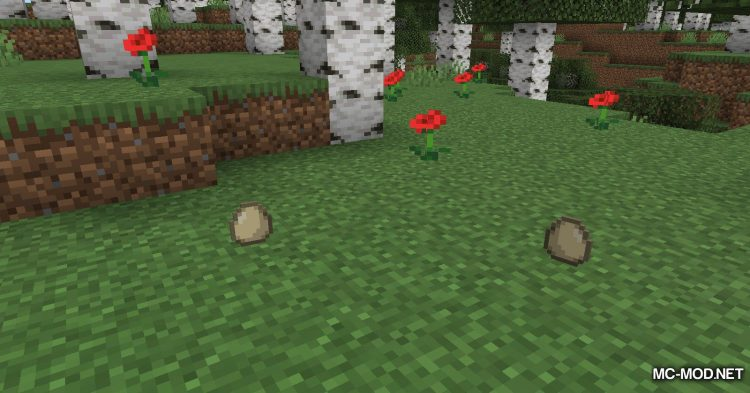 The Egg Came First mod for Minecraft (4)