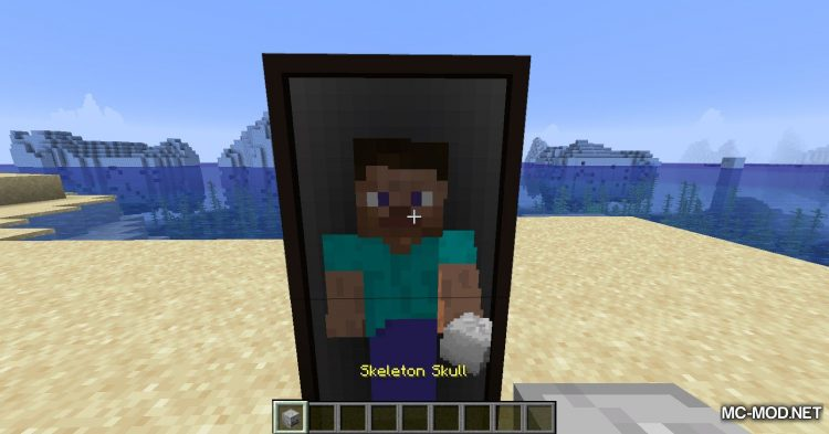 The Magic Mirror mod for Minecraft (9)