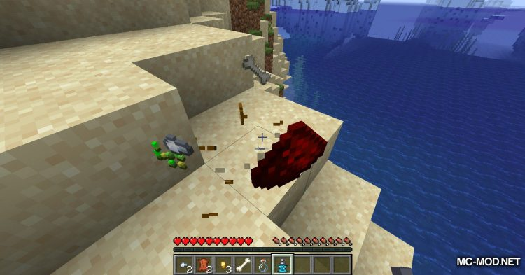 The Recall Potion Mod mod for Minecraft (5)