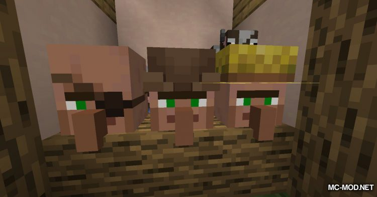 Cubic Villager mod for Minecraft (5)