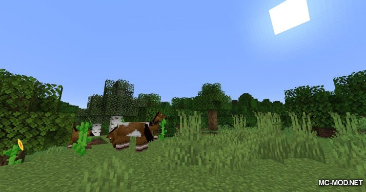 Musket Mod mod for Minecraft (2)