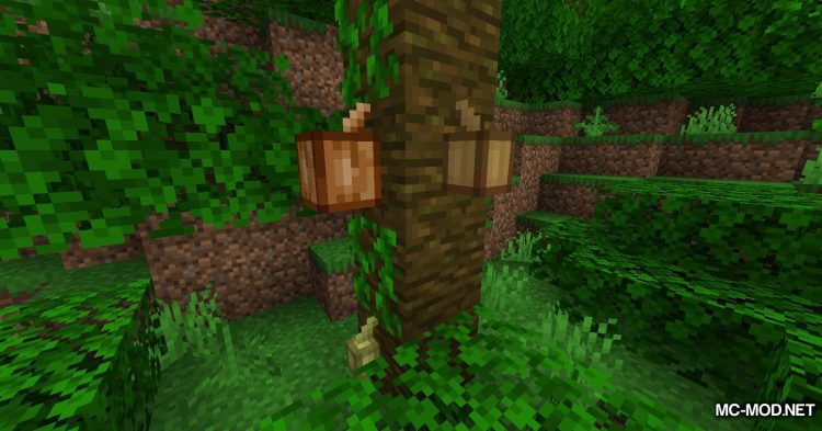 Simply Beans mod for Minecraft (2)