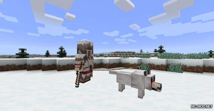 Wandering Trapper mod for Minecraft (14)