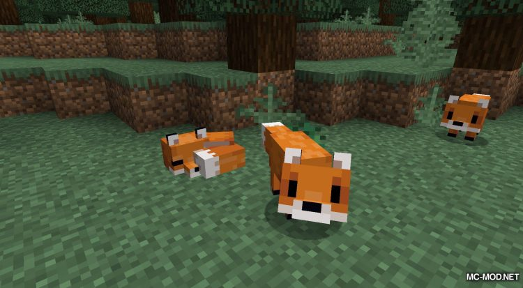 Agrianimal mod for Minecraft (3)