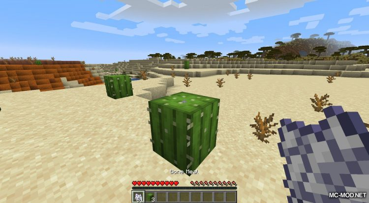 Extended Bone Meal mod for Minecraft (12)