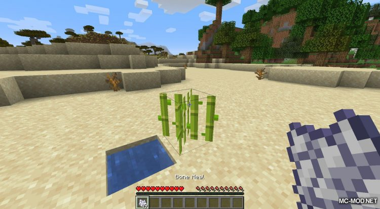 Extended Bone Meal mod for Minecraft (14)
