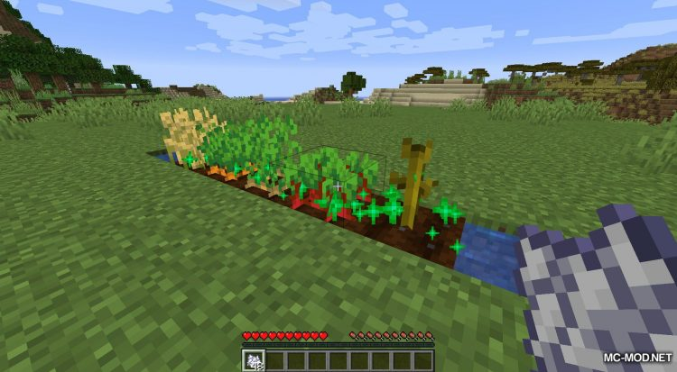 Extended Bone Meal mod for Minecraft (9)