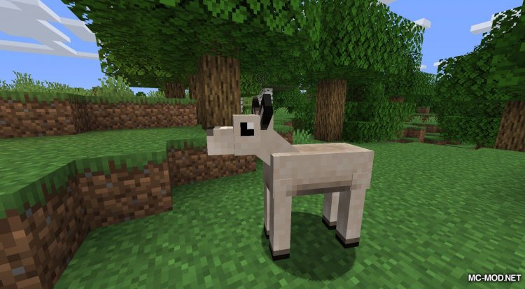 Gentle Fawn mod for Minecraft (3)