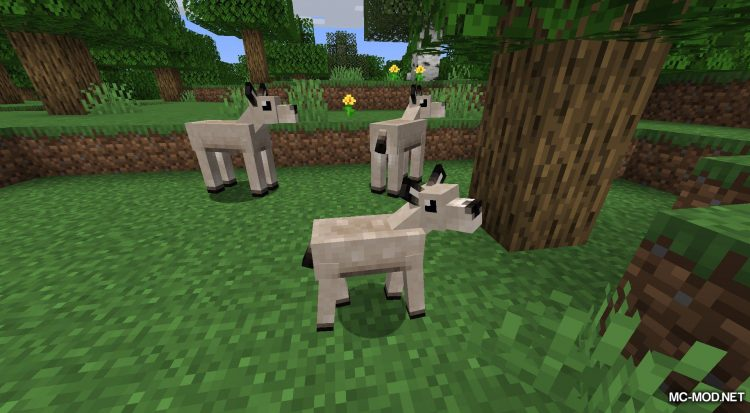 Gentle Fawn mod for Minecraft (4)
