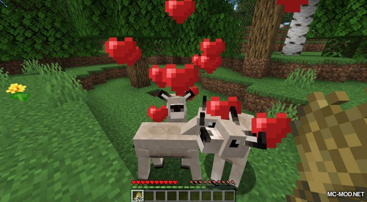 Gentle Fawn mod for Minecraft (6)