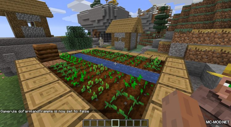 More Gamerules mod for Minecraft (7)