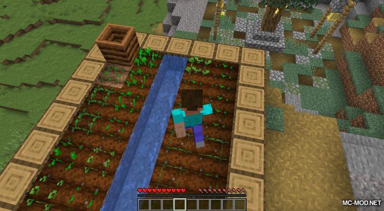 More Gamerules mod for Minecraft (8)
