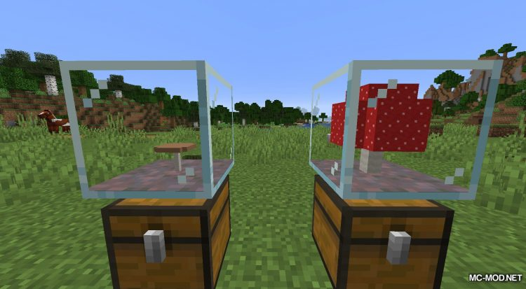 Plant In A Jar mod for Minecraft (12)