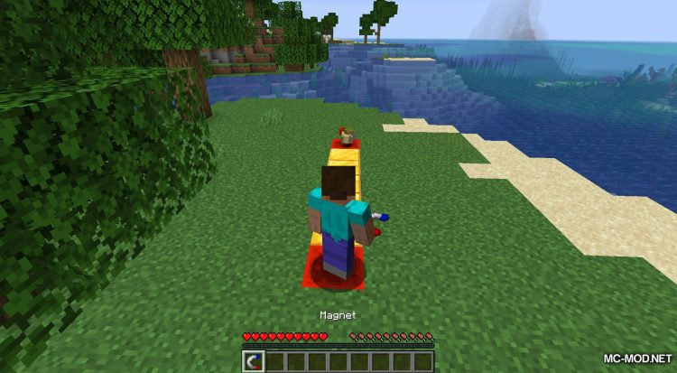 Simple Magnets mod for Minecraft (4)