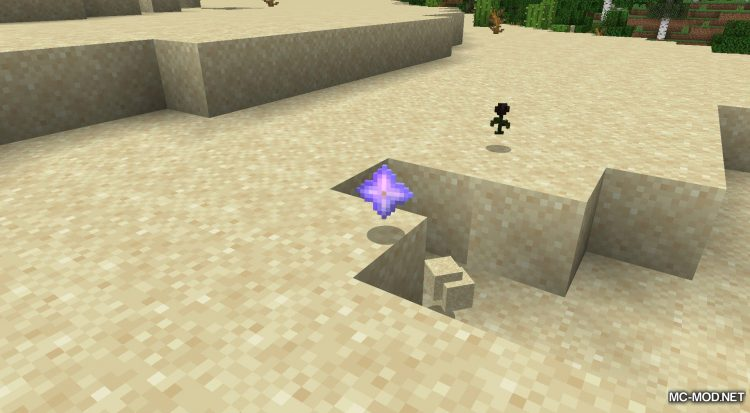 Wither Hoe Mod mod for Minecraft (3)
