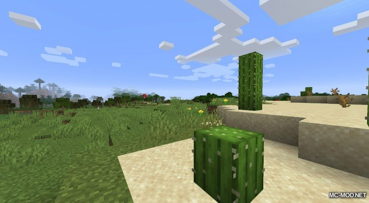 Better Dropped Items mod for Minecraft (2)