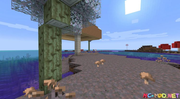 Biome Makeover mod for Minecraft (2)_compressed