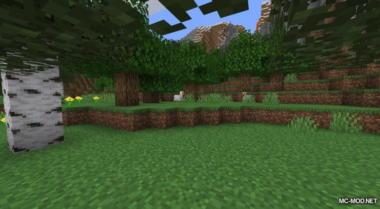 Surrounding Indicators mod for Minecraft (2)