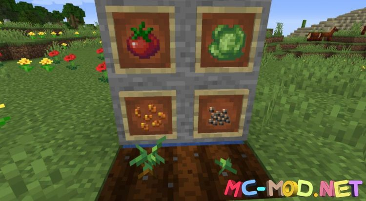 Farmer_s Delight mod for Minecraft (5)_compressed