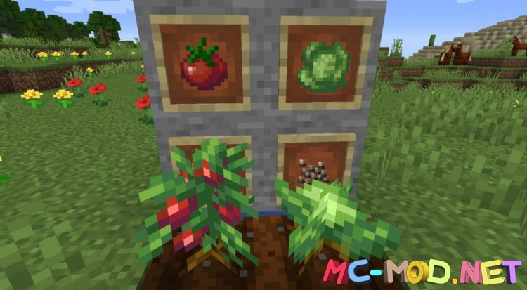 Farmer_s Delight mod for Minecraft (6)_compressed