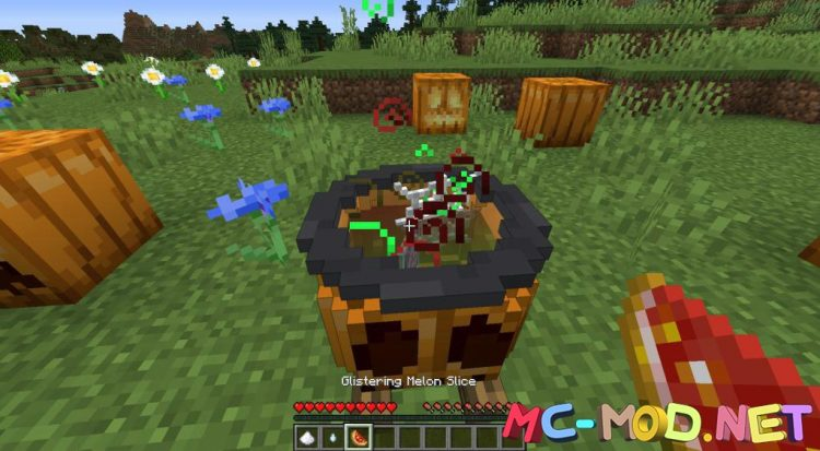 PumpkinPotions mod for Minecraft (9)_compressed