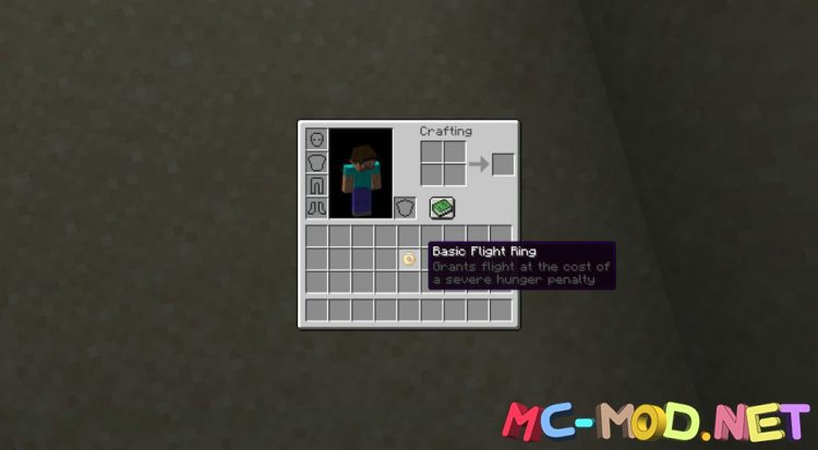 Flight Rings mod for Minecraft (2)_compressed