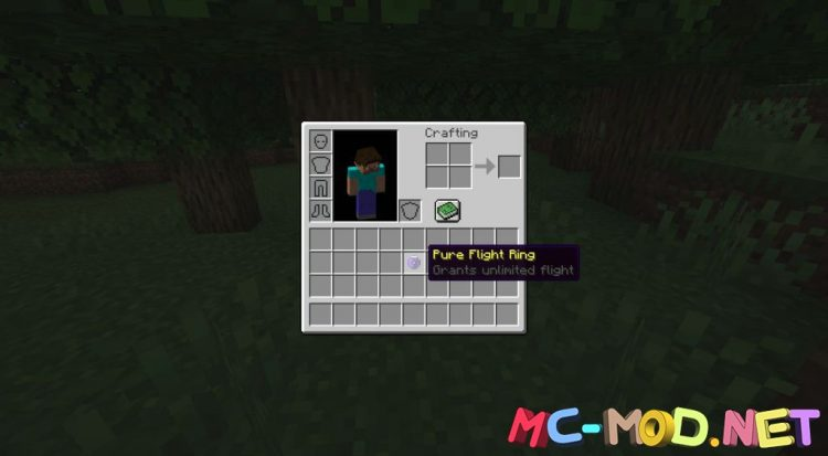 Flight Rings mod for Minecraft (7)_compressed