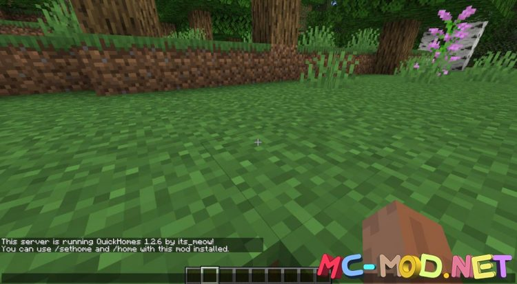 QuickHomes mod for Minecraft (2)_compressed