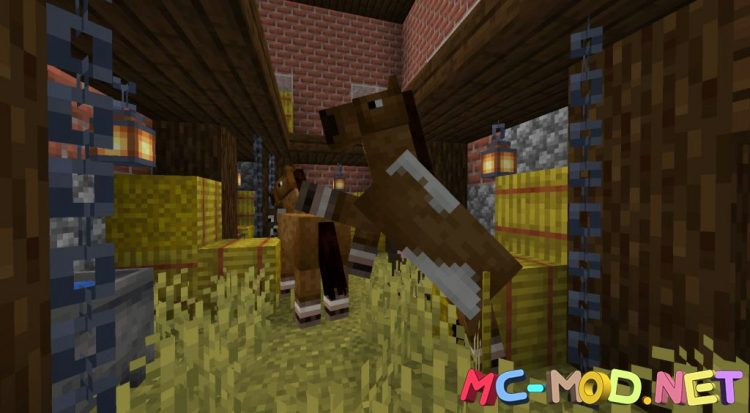 Mo_ Structures mod for Minecraft (17)_compressed