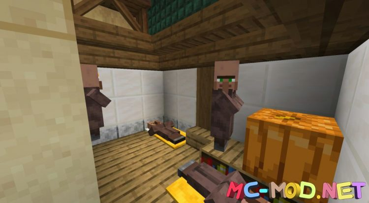 Thatched mod for Minecraft (9)_compressed
